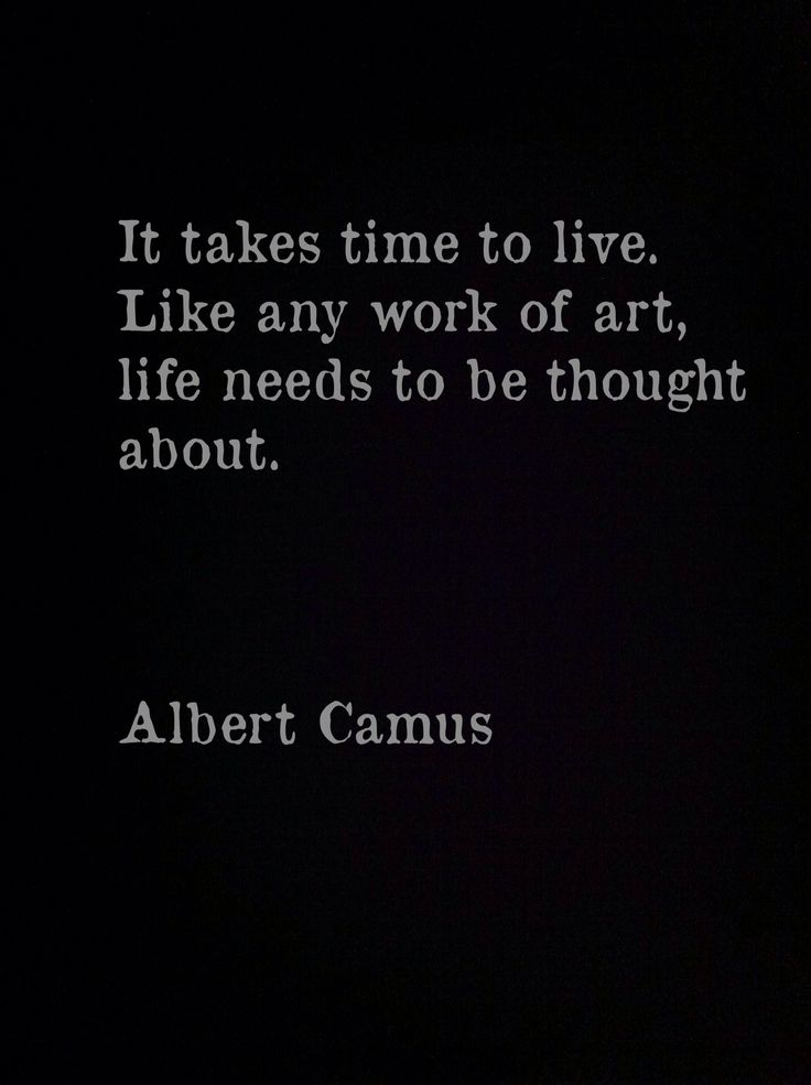 """It takes time to live. Like any work of art, life needs to be thought about.""""   -  Albert Camus."""