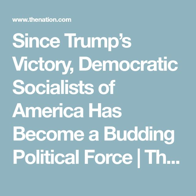 Since Trump's Victory, Democratic Socialists of America Has Become a Budding Political Force | The Nation