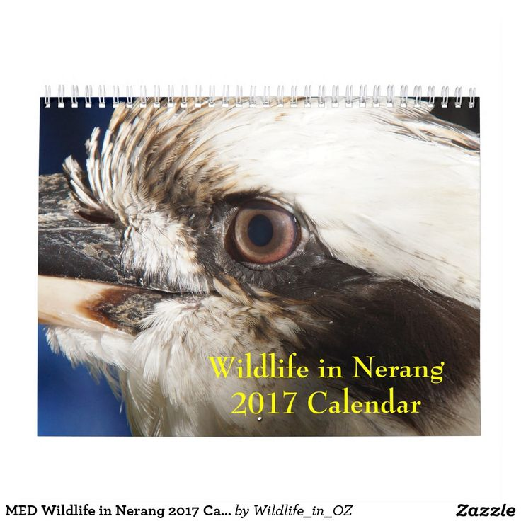 MED Wildlife in Nerang 2017 - Calendar Click on photo to view item then click on item to see how to purchase that item. #wildlife #koalabear #calendar #zazzle