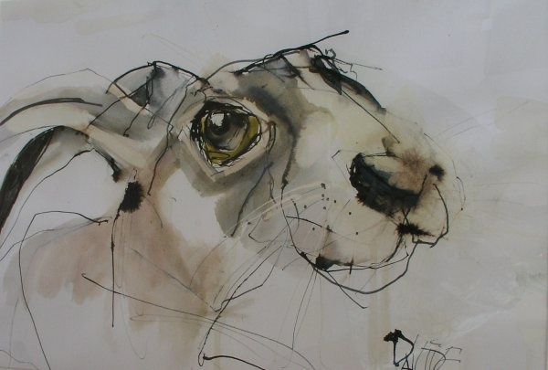 Hare Eyed Pen and ink and watercolour by Valerie Davide