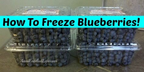 How To Freeze Blueberries - Whether store bought or picked fresh in your backyard, summer blueberries are a great source of antioxidants! To preserve these delicious berries for use when they are not in season, follow these easy How To Freeze Blueberries instructions!  http://www.annsentitledlife.com/recipes/how-to-freeze-blueberries/