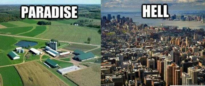 Country life vs town life