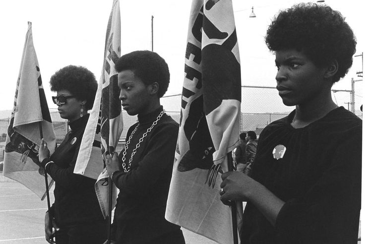 The Black Panthers: Vanguard of the Revolution,