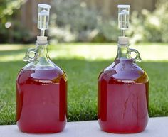 Makes 1 gallon of maple mead