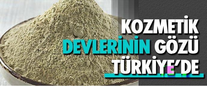 Tokat başta olmak üzere Türkiye'nin birçok ilinde çıkartılan bentonit, cilt bakım maskelerinde kullanılmak üzere dünyanın en büyük kozmetik markalarına ihraç ediliyor.
