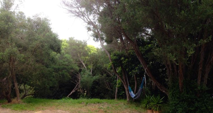 Sit out in the hammock and enjoy the surrounds!