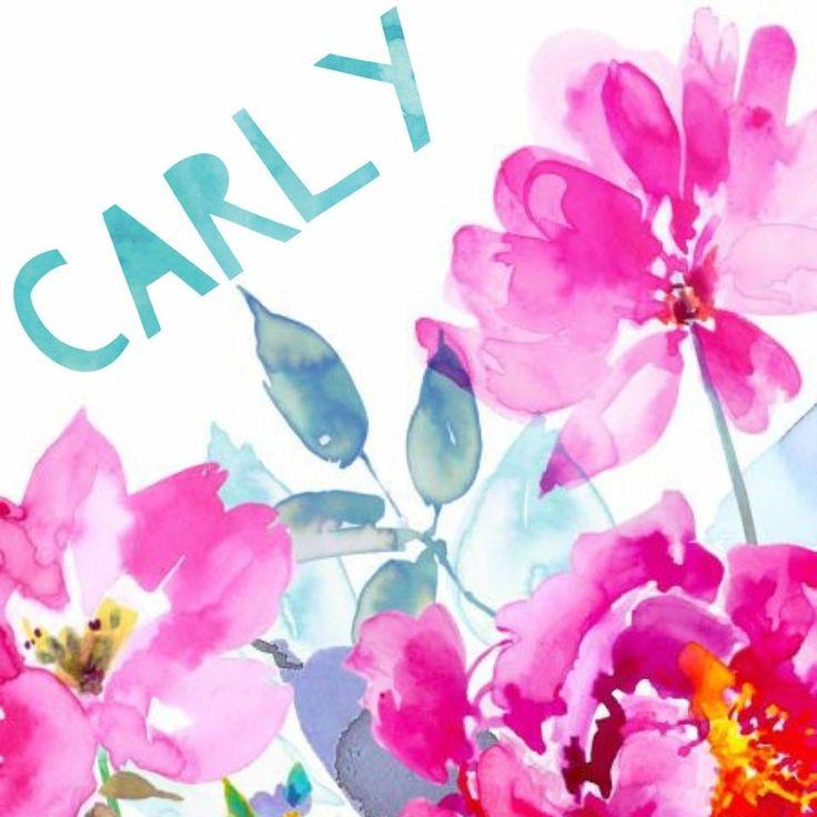 LuLaRoe Album sale Covers - Carly
