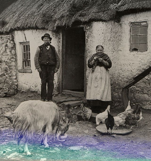 Cottages Ireland  Cottages and Villages - All their life long this unlettered man and woman had to fight against poverty