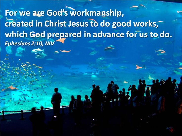 Picture Quote On Ephesianns 210 Niv: For We Are God's Workmanship, Created In Christ Jesus To