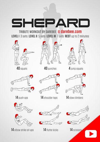 Shepard Workout