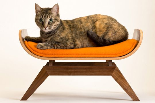 As much as I love them, the cats are not getting a fucking $780 cat bed. Even though it is RAD.