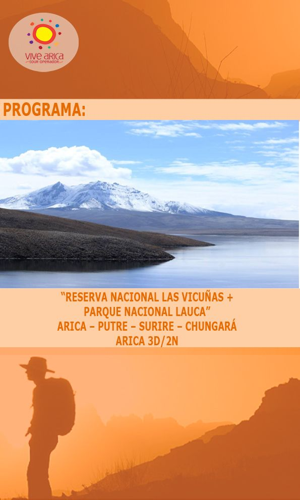 Programas Vive Arica