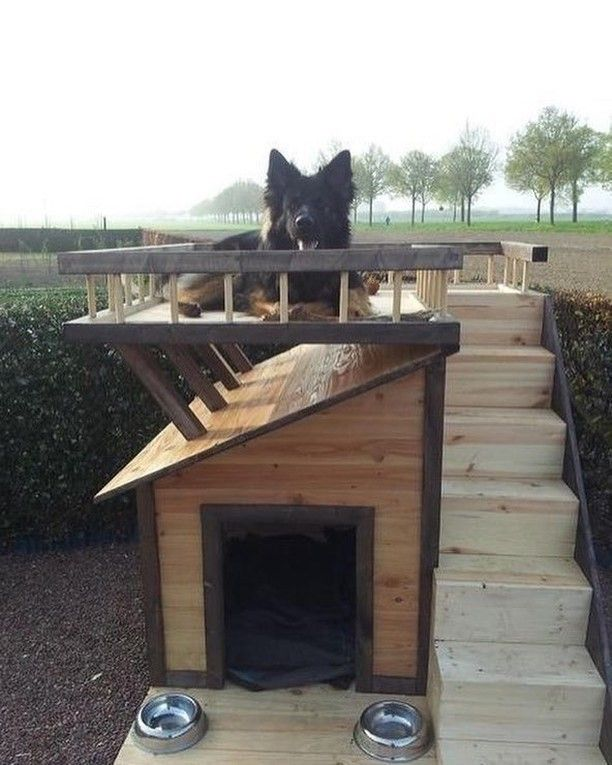 Nice Doghouse Do You Love 2020 Dog Houses Cool Dog
