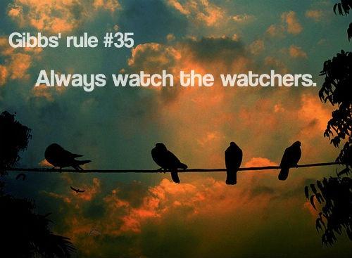 Gibbs Rule 35 - Always watch the watchers