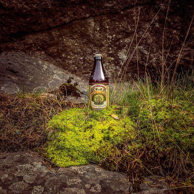 It's not even my birthday... drank it anyways. #alpine #alpinebeercompany #hoppybirthday #sessionipa #ipa #moss #instabeer #birthday #beerphoto #beerphotography #productphotography #alwaysdrinkupstreamfromtheherd #beergeek #bottleshopcanterbury #brewpix #beerporn #shade #craftbeerporn #untappd #beerart #käsityöläisolut #craftbeergeek #rocks #pienpanimo #beertography #craftbeerart #beergasm #bottleart #craftbeer