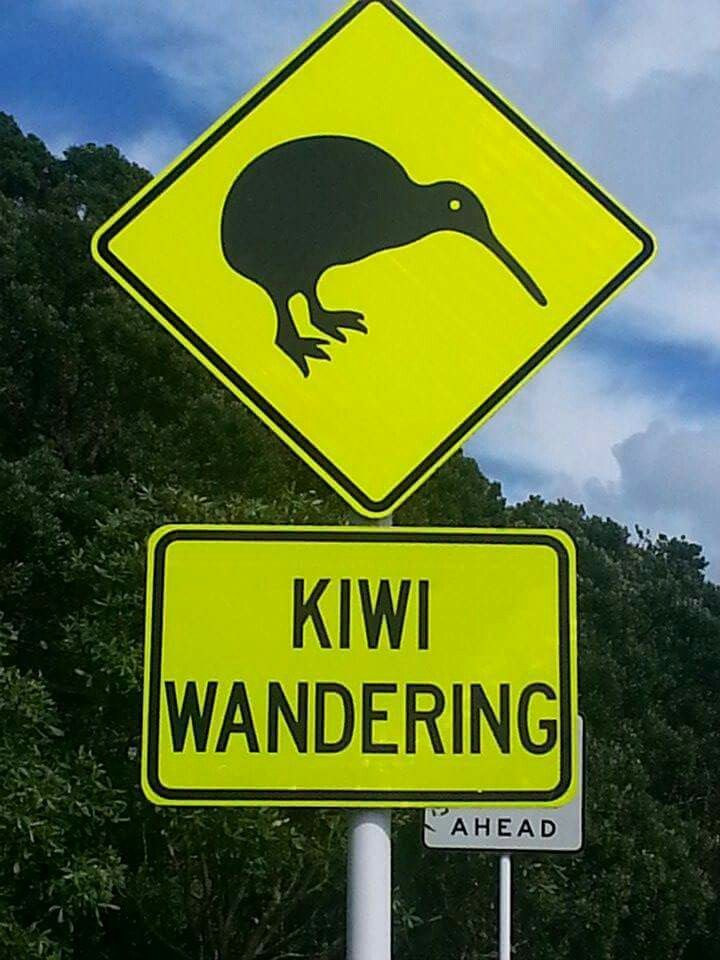 Only in New Zealand