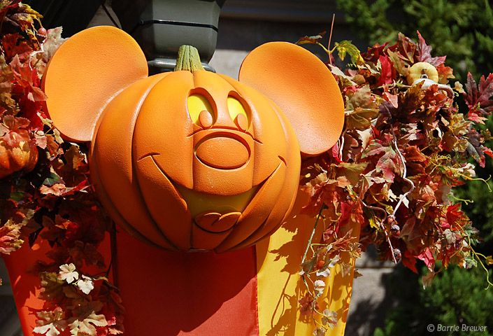 Mickey Mouse Jack-O-Lantern - The Official Blog of David's ...