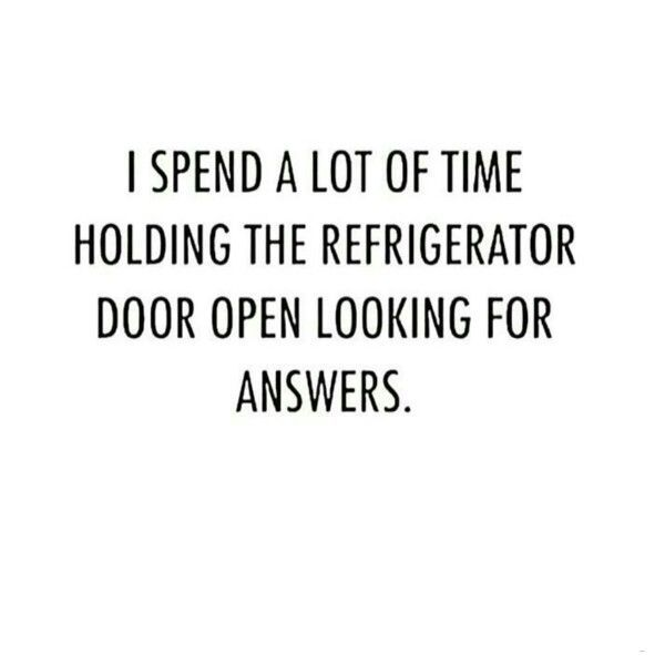 I SPEND A LOT OF TIME HOLDING THE REFRIGERATOR DOOR OPEN LOOKING FOR ANSWERS. ♡