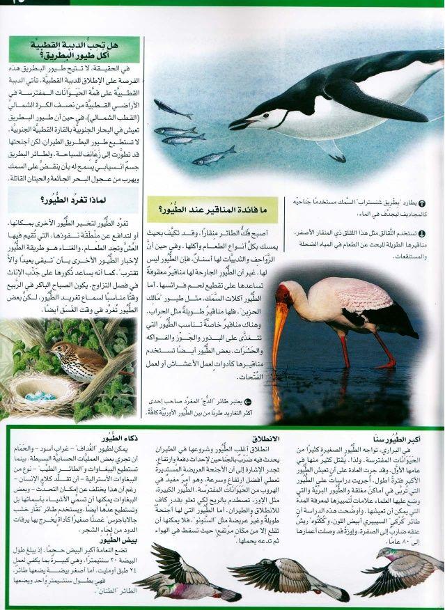 موسوعة سؤال وجواب عالم الطبيعة