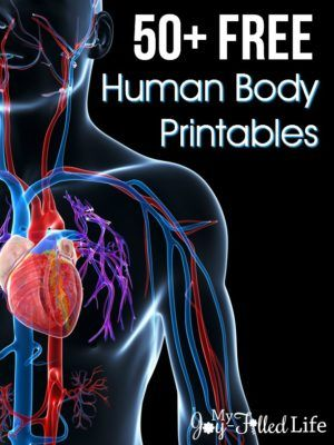 50+ FREE Human Body Printables & a BIG Giveaway