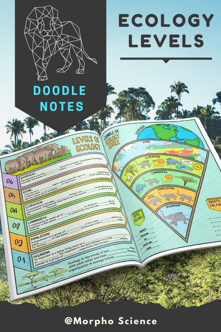 Ecology Levels Doodle Notes Ecological Organization Doodle Notes Science Doodles Doodle Notes Science