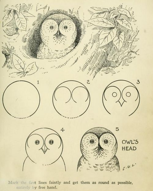 How to draw an owl, 1921: Easy Owl, Draw An Owl, How To Drawings Owl, Easy A, Young Artists, Drawings An Owl, Owl Drawings, Help Book, Book Drawing