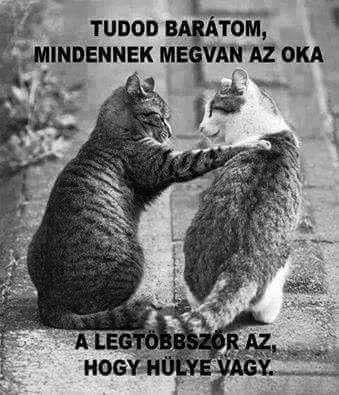 Ahaa :)