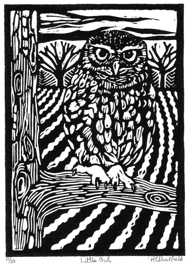 Best woodcuts images on pinterest