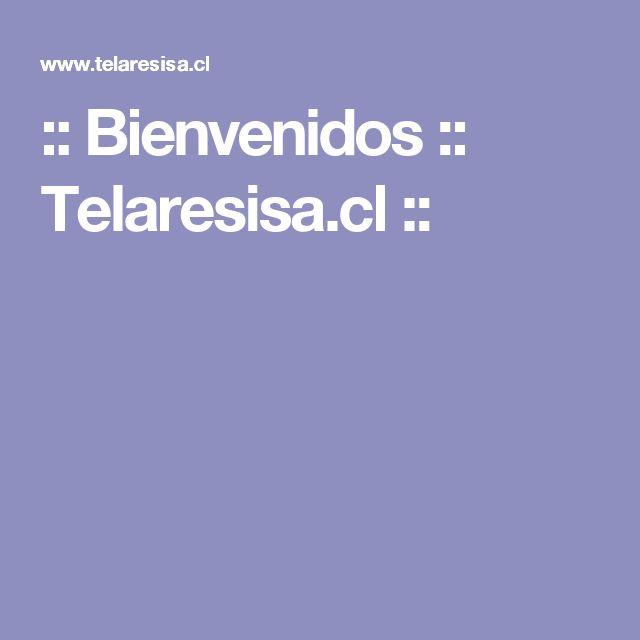 :: Bienvenidos :: Telaresisa.cl ::