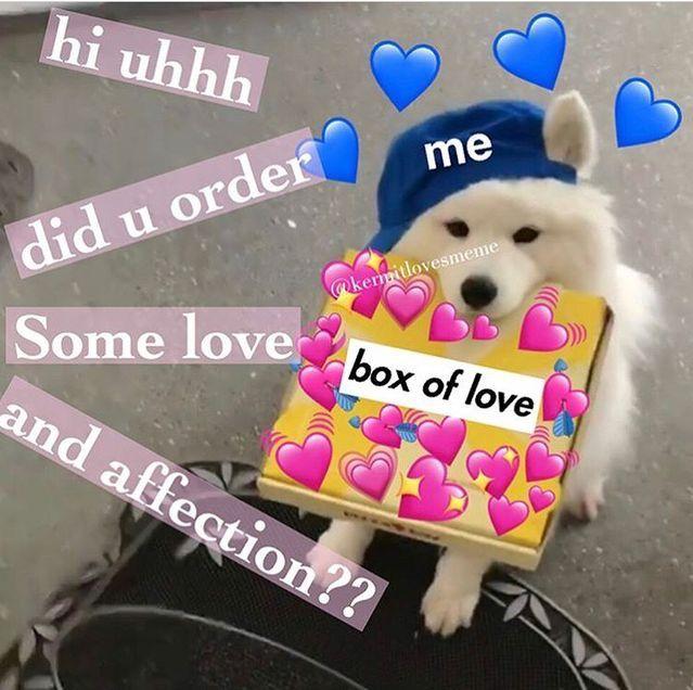 Pin By Samantha Andrews On Heart Memes Cute Love Memes Love You Meme Cute Memes