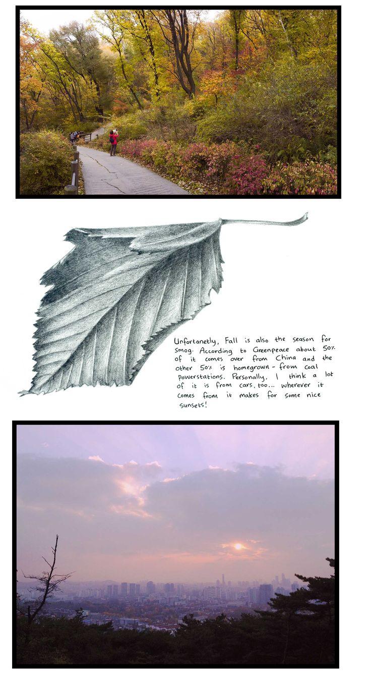 Journal: Fall in Seoul