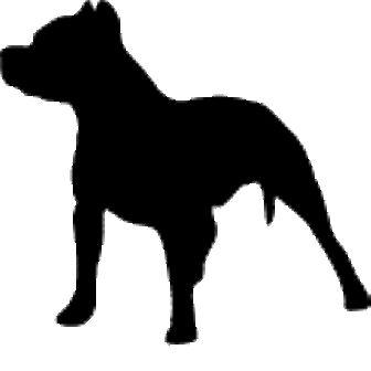 Outline pit bull paper