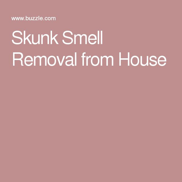 Skunk Smell Removal from House