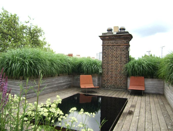 Rooftop Garden With Natural Water Feature And Grass Barrier To - Rooftop landscaping