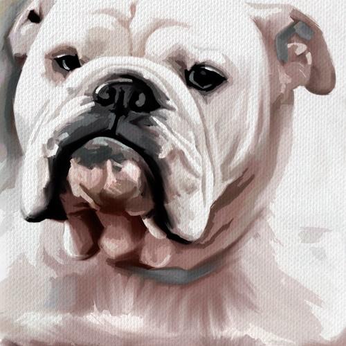 Bulldog English Dog Pet Original Painting Canvas Art Giclee Print 20x30 | eBay