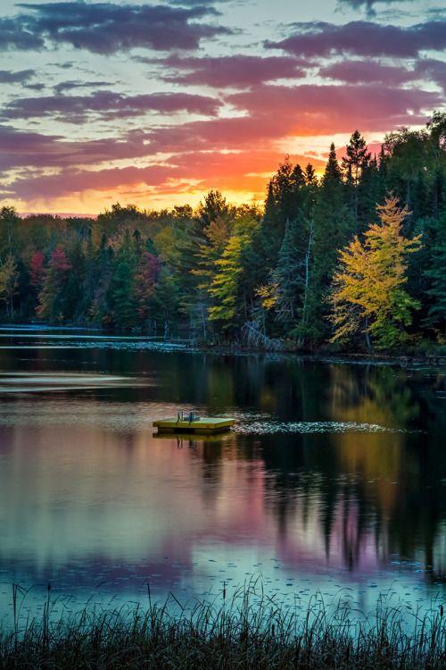 Wald im Frühherbst gespiegelt mit Abendrot