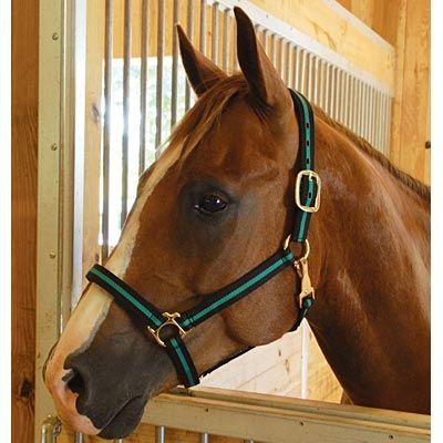 Horse com coupon code