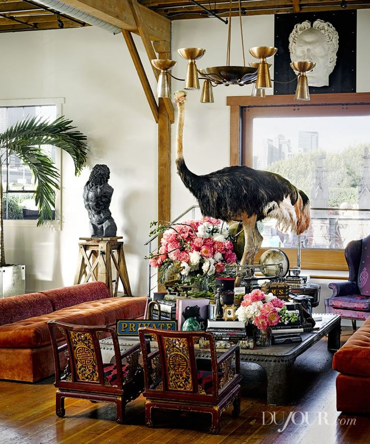 55 best have some decorum decorating with taxidermy images for Decor and decorum
