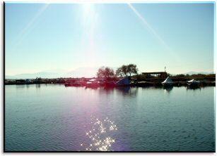 Lagoon Tsokalou/ Η λιμνοθάλασσα του Τσοκαλου