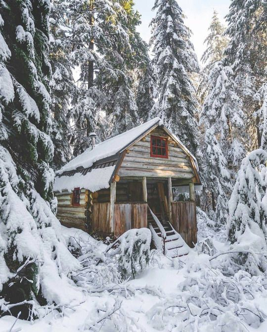 @amyannettely, it's been a long week recovering from surgery. I'm still tired, and this cozy cabin would provide a snowy, wintry reason to stay inside besides I must. | 12.24.16