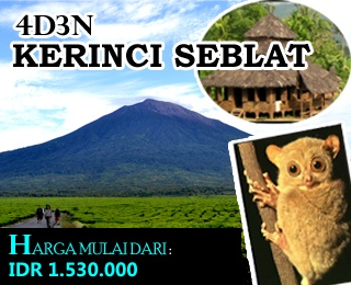 "4D3N Kerinci Seblat ""Echo & Soft Adventure"" Trip. Exploring Kerinci Seblat National Park, Jungle Hikes, Trekking, Birdwatching and You'll climb one of the Gunung Tujuh to see the lake of Gunung Tujuh. Starting from IDR 1.530.000, min. 2 Person. For detail package, contact us at: (021) 2316306 or visit: http://ezytravel.co.id."
