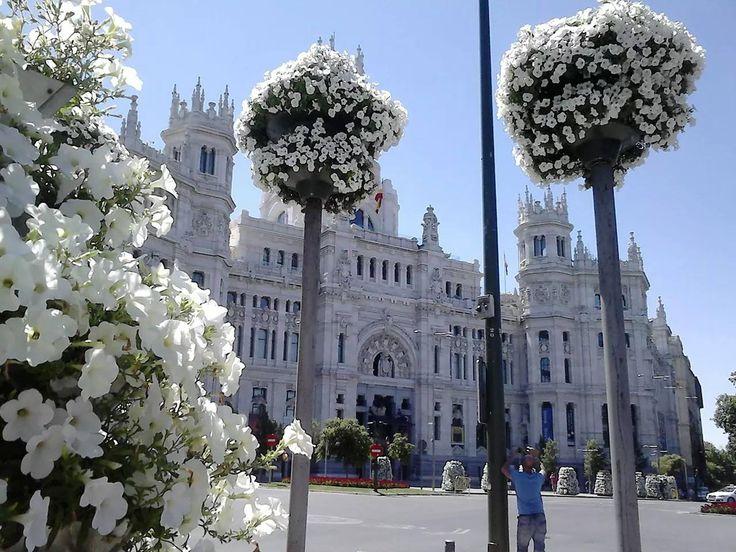 Ayuntamiento de Madrid. ESPAÑA