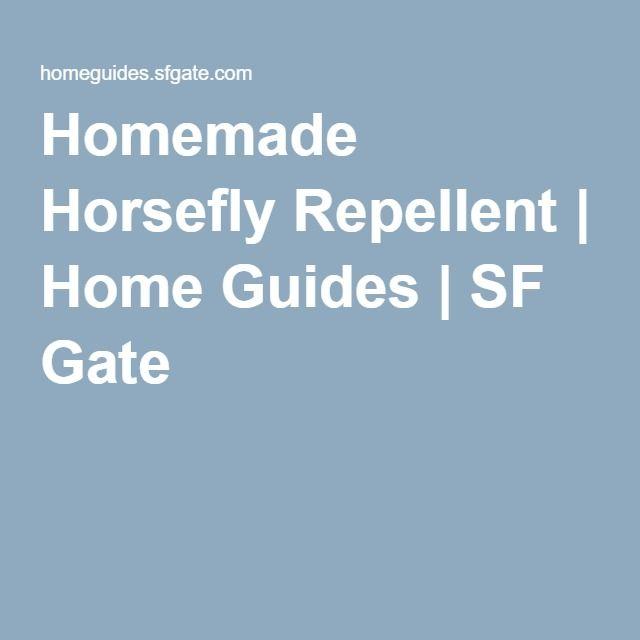 Homemade Horsefly Repellent | Home Guides | SF Gate