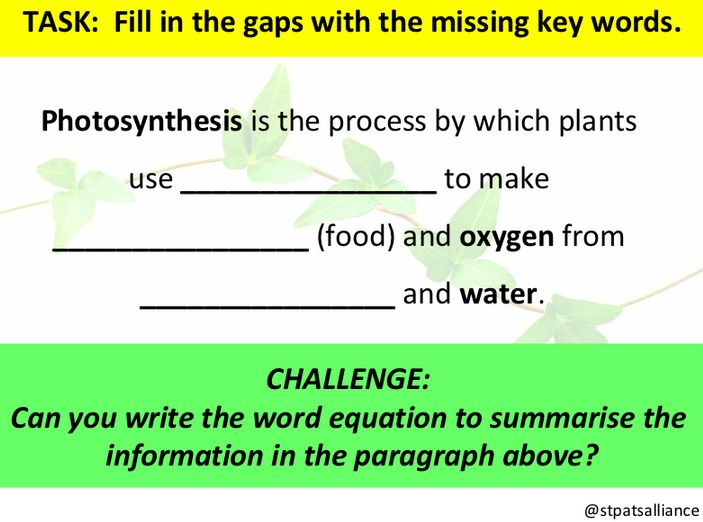 A simple, one slide cloze text on Photosynthesis