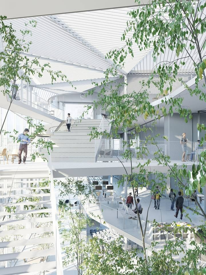 Sou Fujimoto-Led Team Selected to Design Ecole Polytechnique Learning Centre in Paris