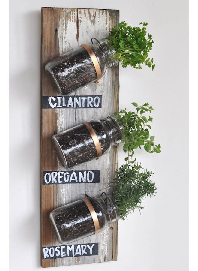 herb « Element Eden Australia    Here @Jenn L Vogel this is a more economical way to have them in your home