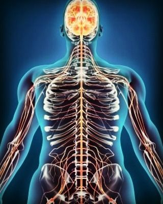 B3 (Brain – Body – Balance) therapy encourages the body's innate ability to heal and maintain itself. #body #bodyhealth…