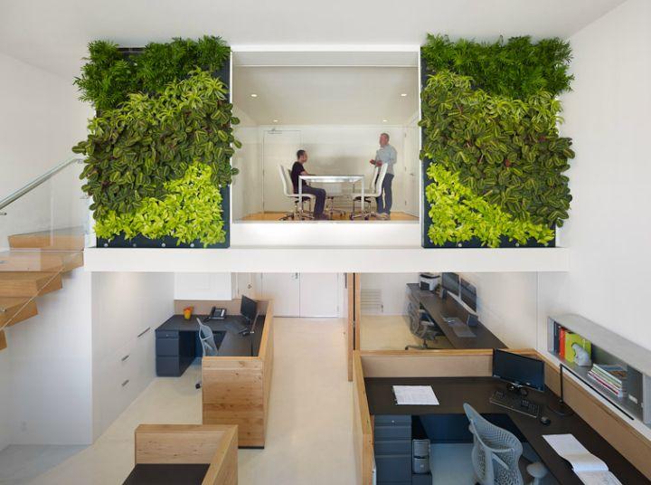 Studien haben es bewiesen: Grünpflanzen im Büro sind nicht nur nett fürs Ambiente, sondern auch gut für die Arbeitsmoral. Und so werden grüne Büros immer beliebter, wobei sich manche an Kreativität und Bepflanzung fast schon überschlagen. Hier ist unser Blick in grüne Büros, die in Sachen Grün nicht nur kleckern, sondern so richtig klotzen!