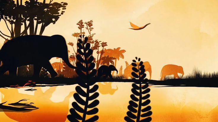 Elephants are wildlife. Not entertainers.