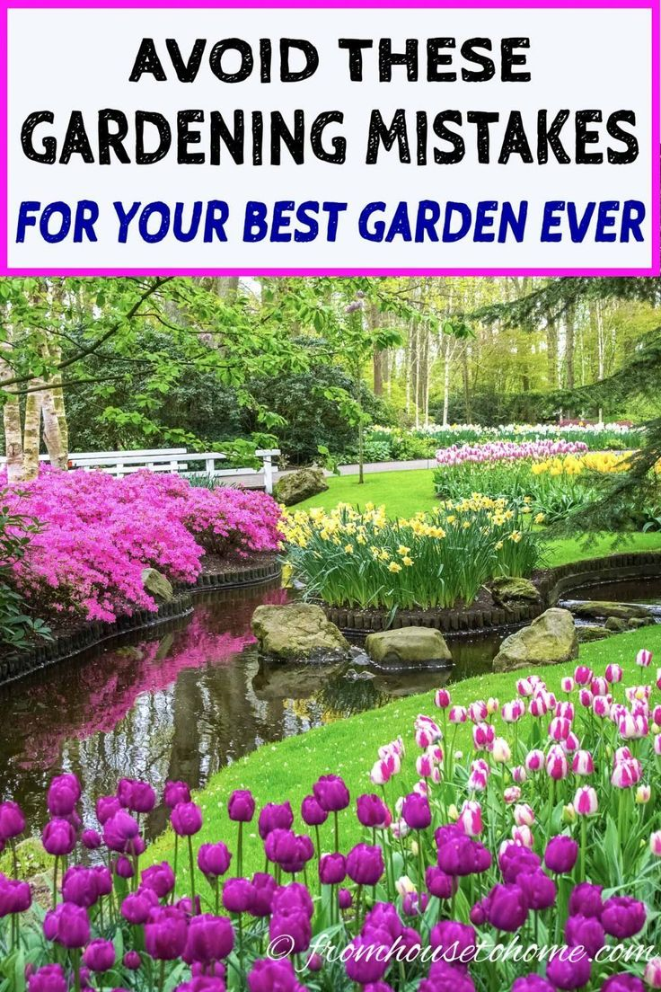 avoid these 10 landscaping mistakes for your best garden 54 Without Planning In A Beautiful Gardening id=97147